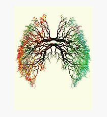 The Root of Lungs Photographic Print
