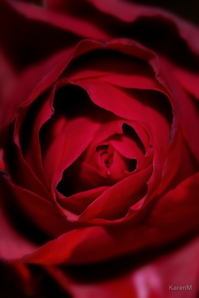 Red Petals by KarenM