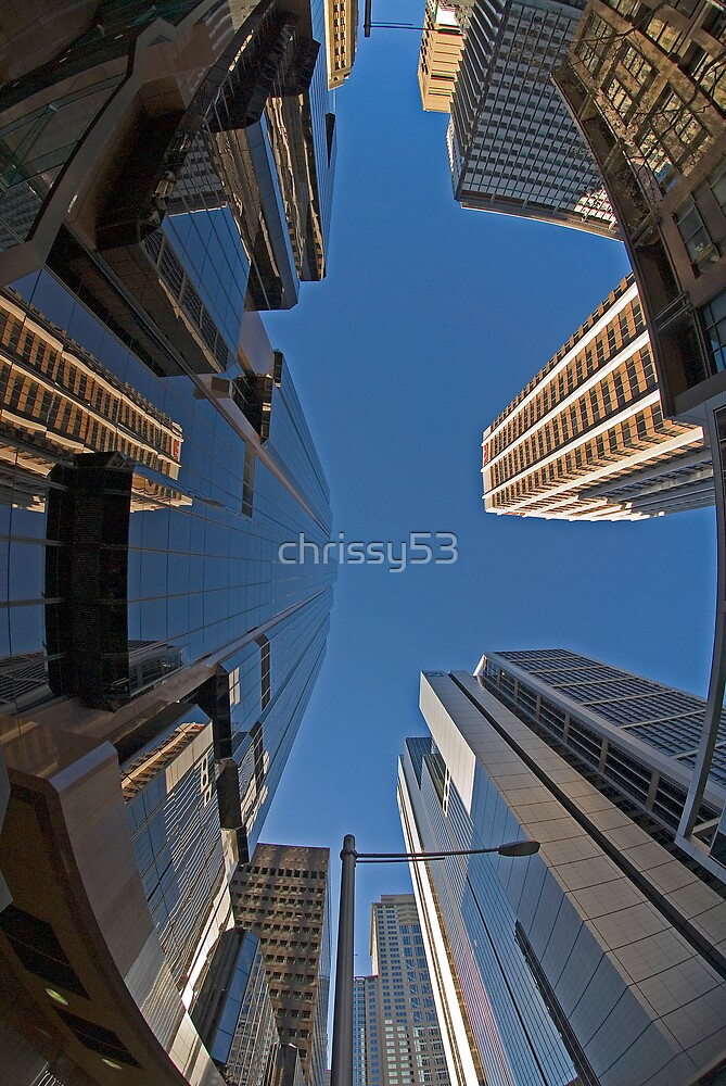 Looking Up by chrissy53