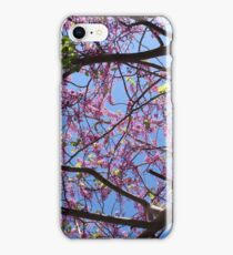 Crown tree with flowers on the sky background iPhone Case/Skin