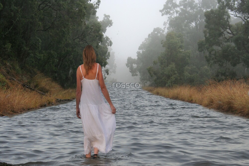 The Journey by rossco