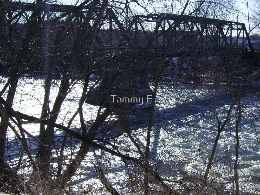 One Lane by Tammy F