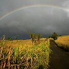 Somewhere Under the Rainbow by Ran Richards