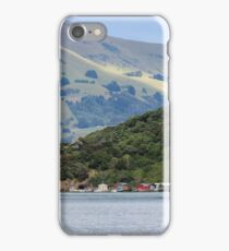 Robinson's Bay iPhone Case/Skin
