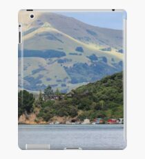 Robinson's Bay iPad Case/Skin