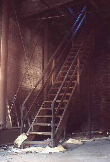 Roof Access Stairs (Armstrong Cork Factory) by Steven Godfrey