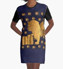 Venetian Lion Graphic T-Shirt Dress