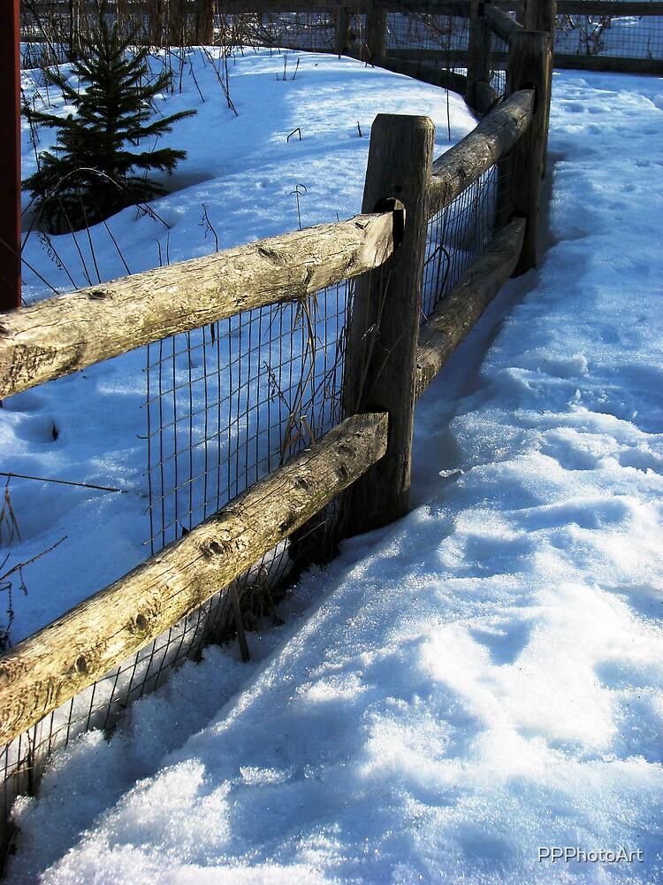 fence by PPPhotoArt