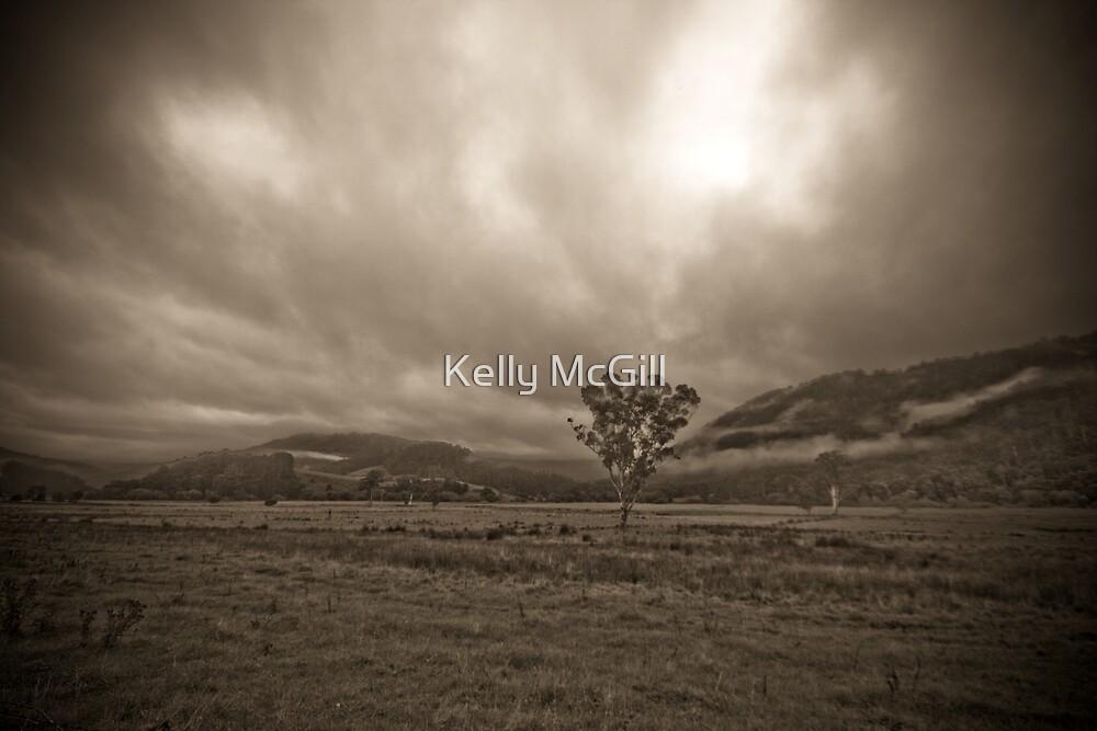 Lone Tree, Pyengana NE Tasmania by Kelly McGill