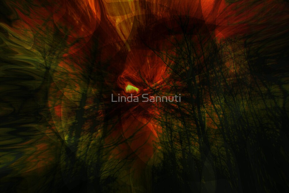 The forest devil by Linda Sannuti