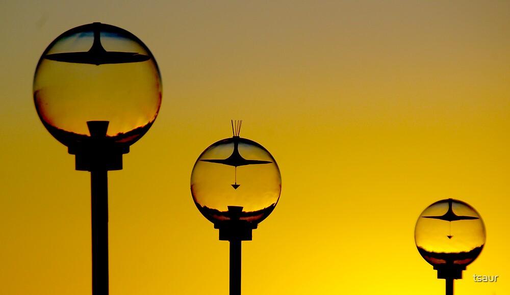 Sunrise Lights At Sydney Opera House by tsaur