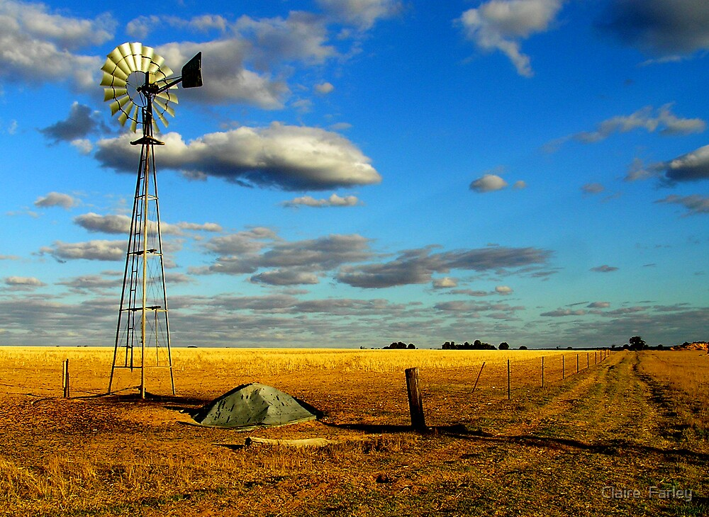 A Corrigin Windmill by Claire  Farley