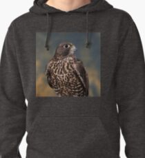 Falcon I Pullover Hoodie