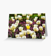 Lonely Yellow Tulip  Greeting Card