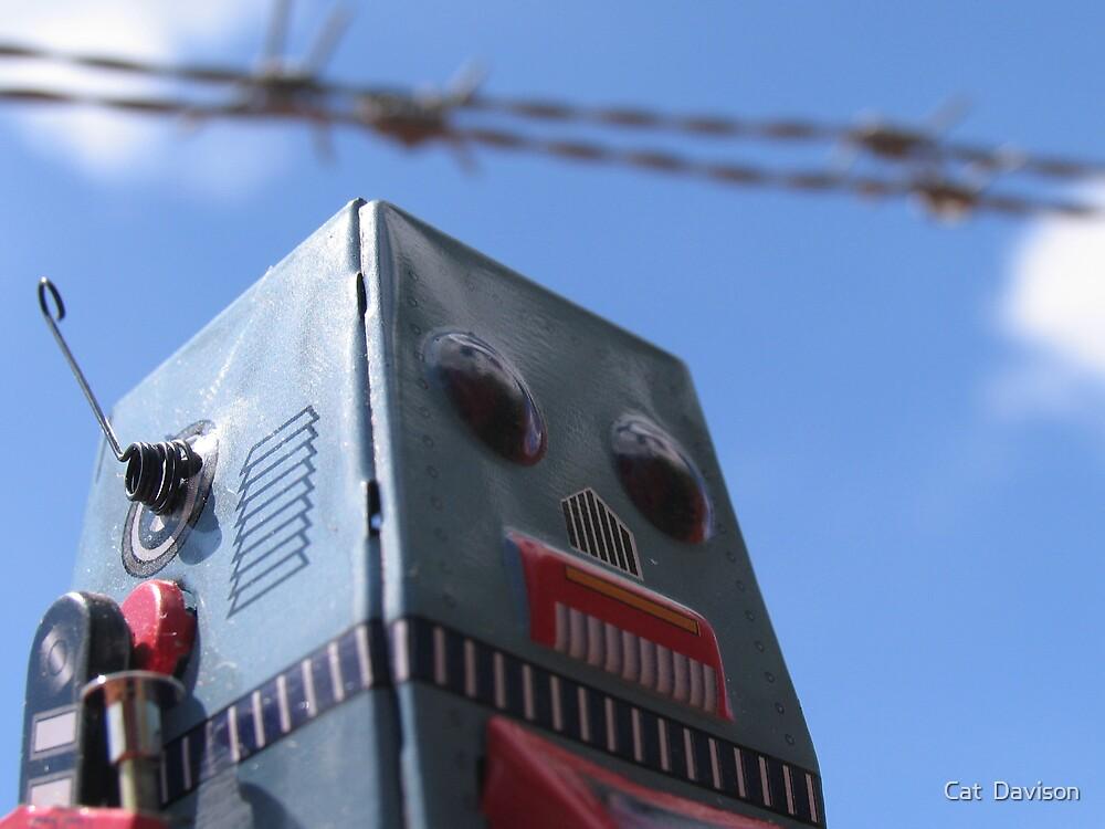 Robort by Cat  Davison