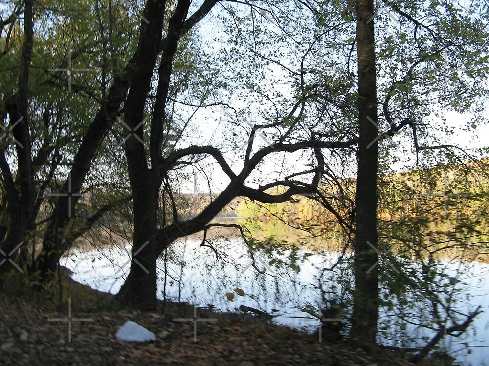 Potomac River by PhotogOnTheFly