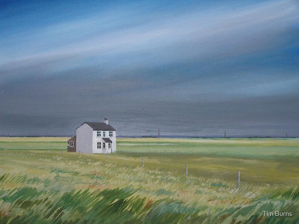 Hinterland by Tim Burns