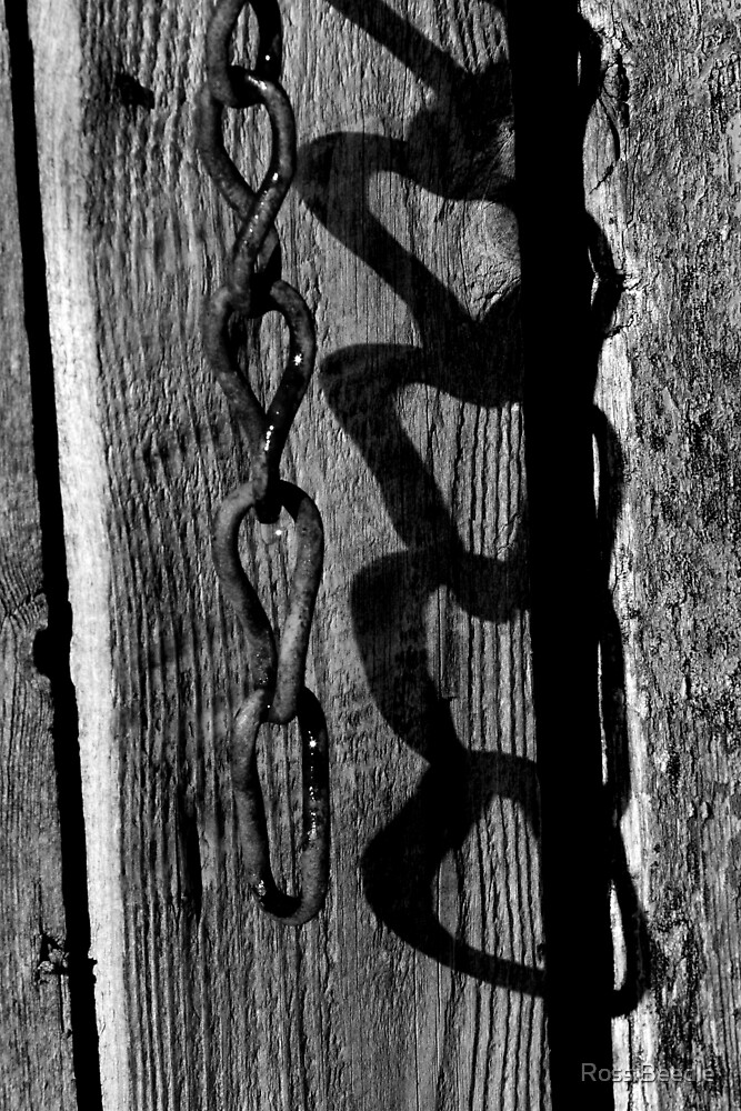 Chain & shadow by Ross Beedle