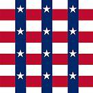 Dallas Austin Houston Flag by deanworld