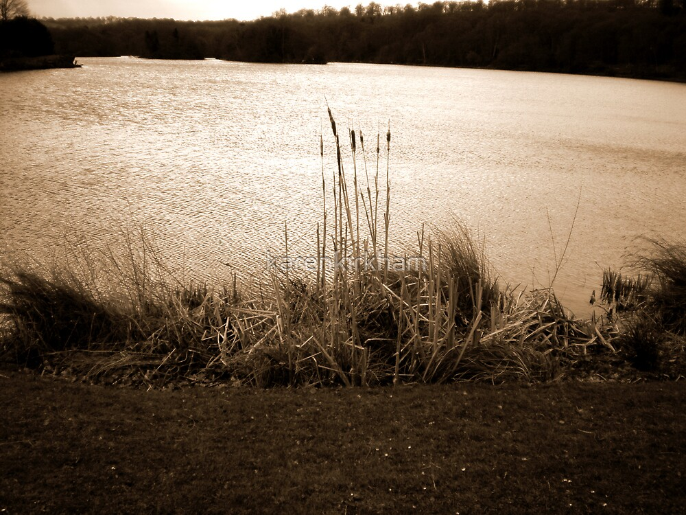 Trentham lake by karenkirkham