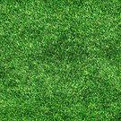 Grass Skirt by deanworld