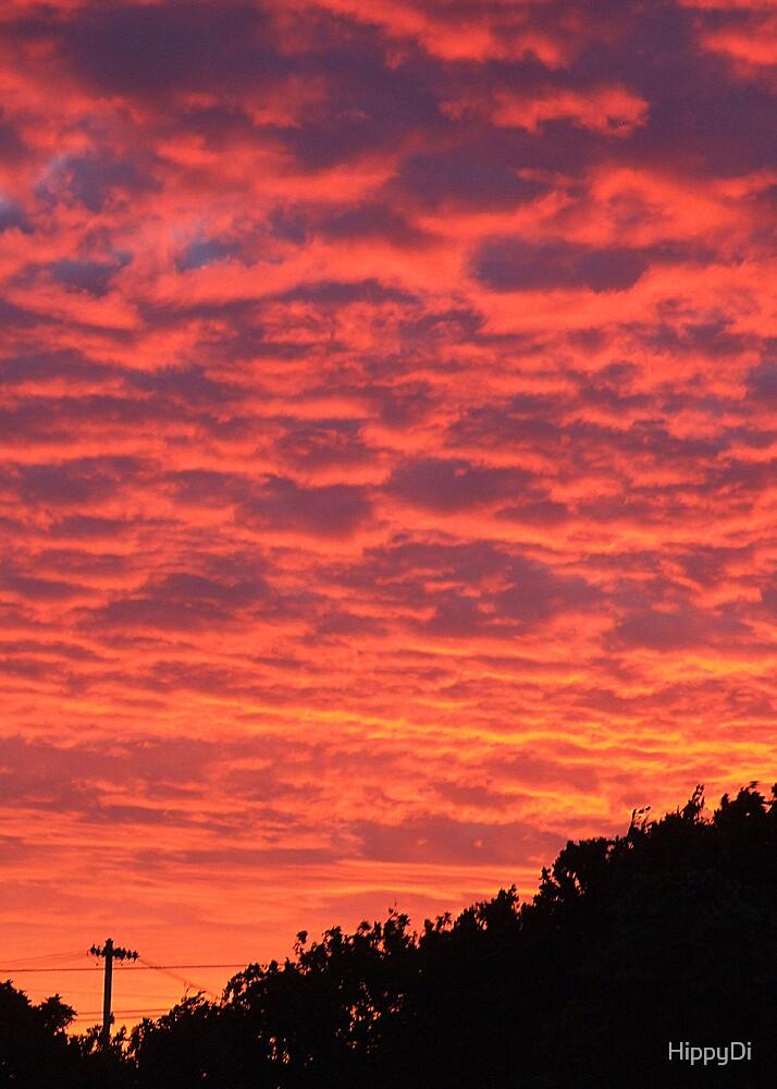 Fiery Sky by HippyDi