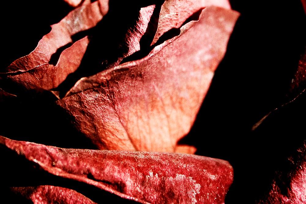 Darkly Romantic by KarenMcWhirter