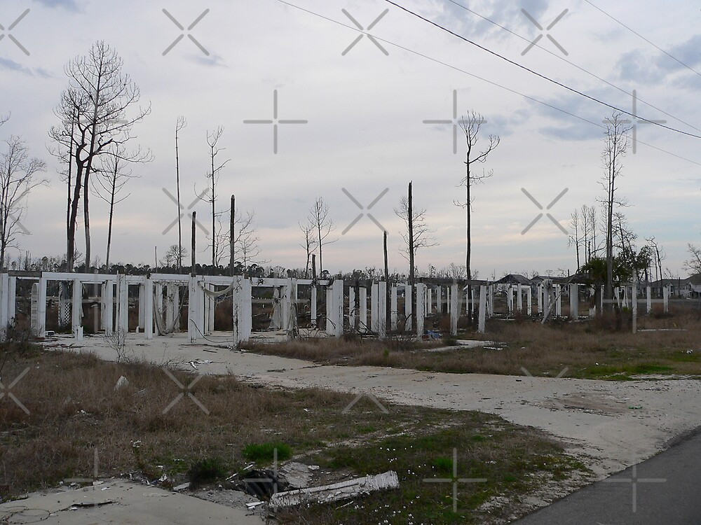 Hurricane Katrina Damage In Mississippi #1 by kevint