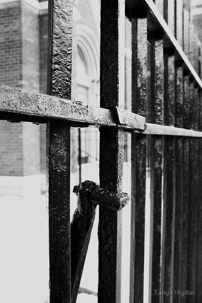 Iron Fence by Tanya Higdon