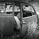abandoned by Lynne Prestebak