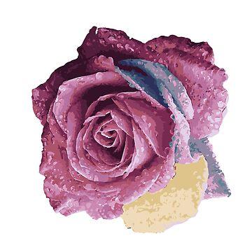 Rose by mayomy
