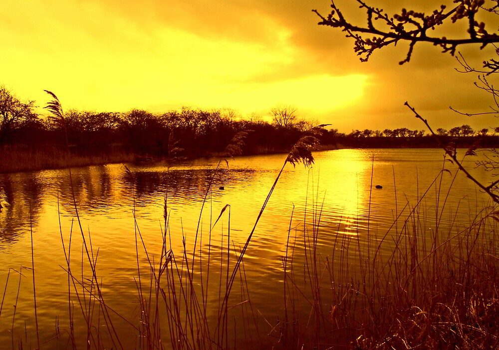 Sunset Over The Lake by Ian Foss