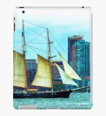 Hudson River iPad Case/Skin