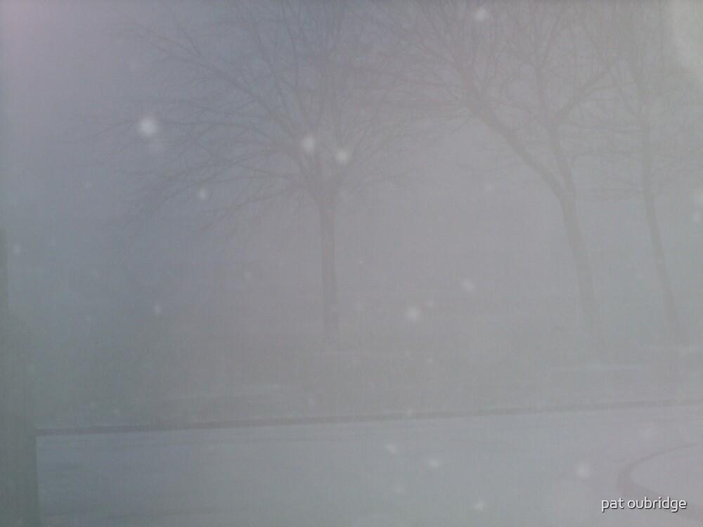 Blizzard by pat oubridge