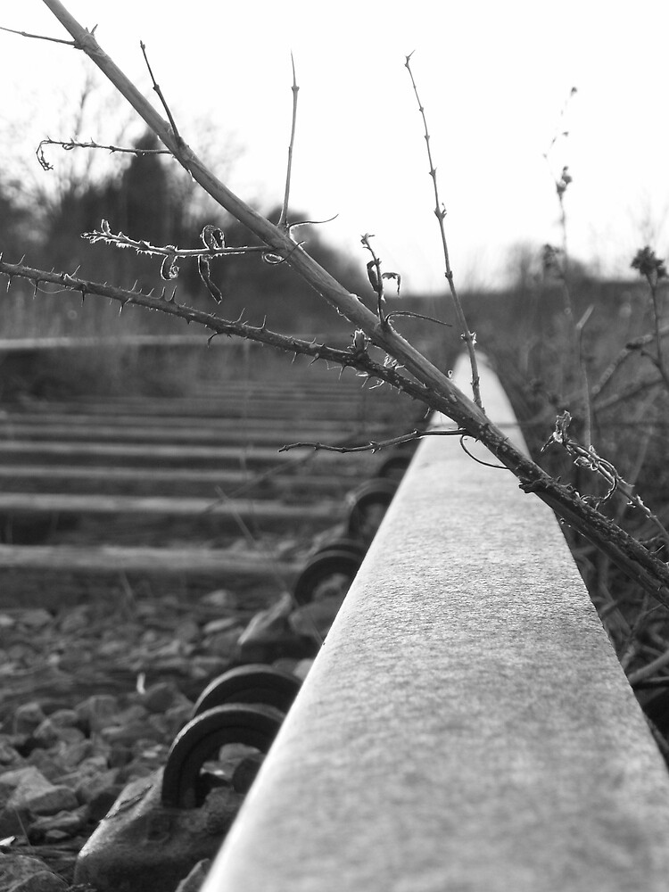 Growing Over (Black and White) by Emma and Dave Atkinson