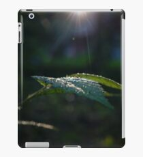 Wet Leaf Lens Flare iPad Case/Skin