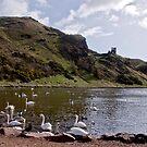 St Margaret's Loch by Chris Clark