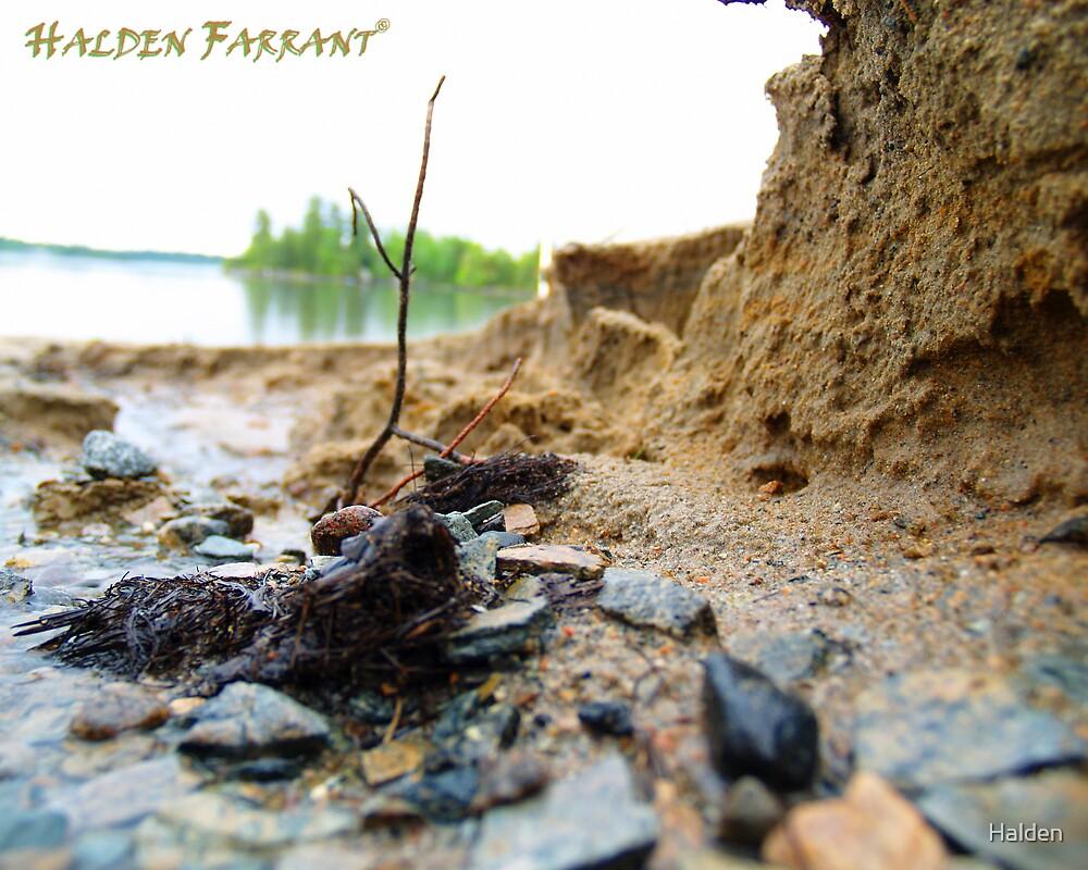 Massive Erosion by Halden