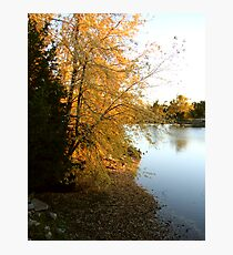 Lake shore in autumn Photographic Print