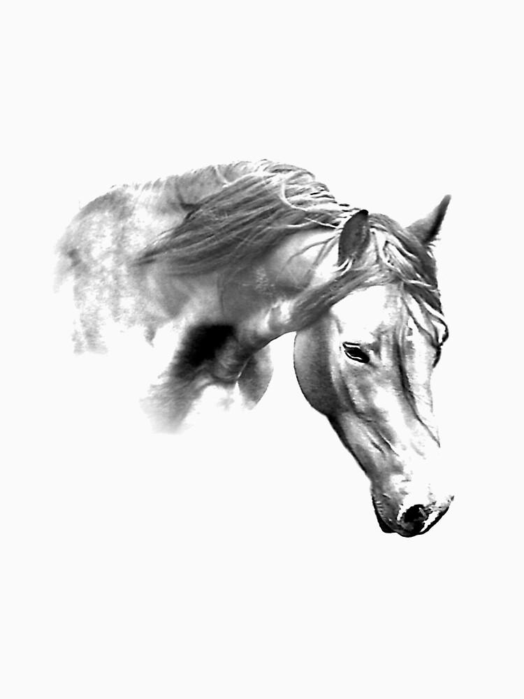 Horse by AnthonyThomas