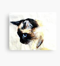 Siamese Cat Acrylics On Paper Canvas Print