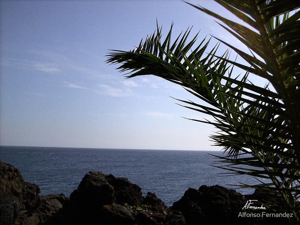 Ocean 1 by Alfonso Fernandez