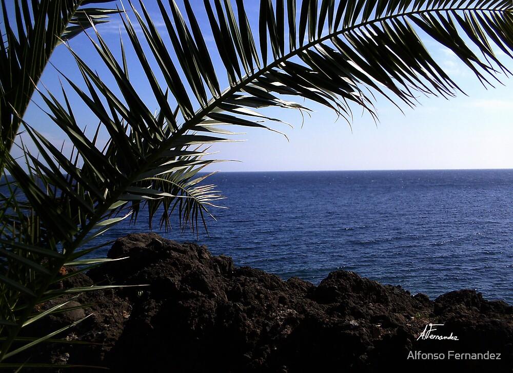 Ocean 3 by Alfonso Fernandez