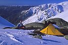 Albina campsite by Travis Easton
