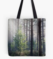 10.6.2017: Young Birch Tote Bag