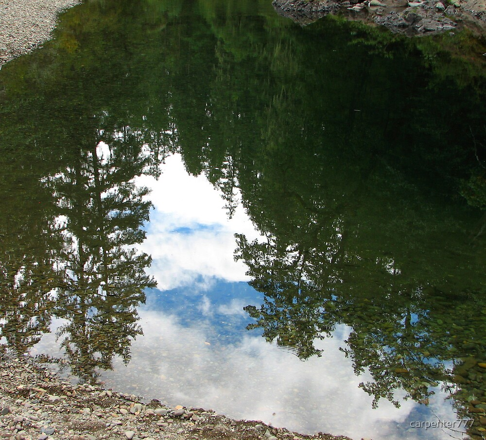 tree reflection by carpenter777