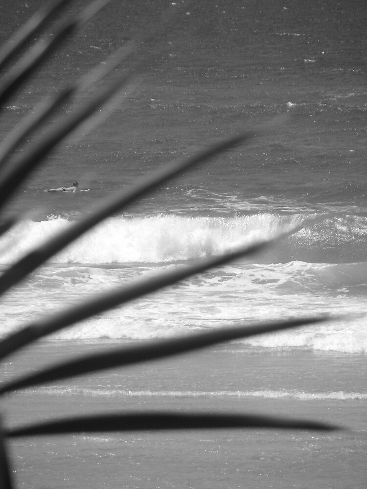 beach by lauralock