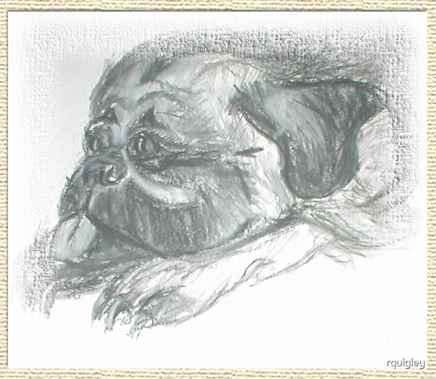 Pooka the Pug by rquigley