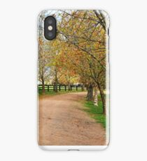 Deciduous tree lined country road in Autumn iPhone Case/Skin