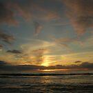 Cali Sunset by Doug Bend